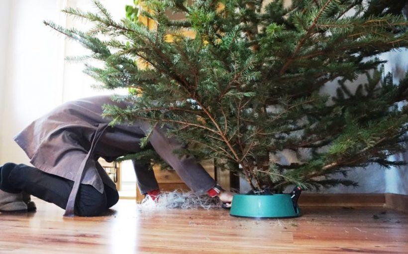 Wann Weihnachtsbaum Aufstellen.Wegwerfprodukt Weihnachtsbaum Wohin Damit Neue Henneberger Zeitung