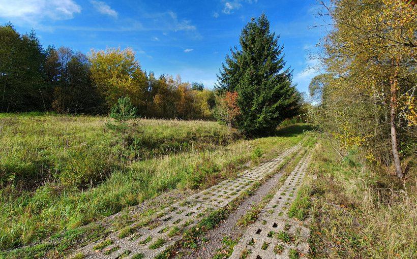 Kolonnenweg Grenze Naturschutzgebiet grünes Band