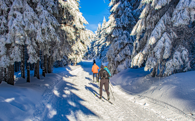 Skifahrer am Schneekopf Thomas Dreger