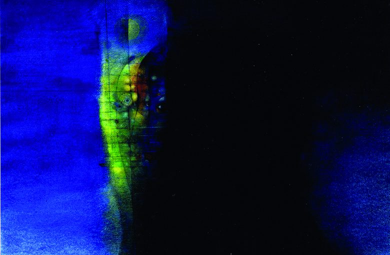 Hausmann Blaunacht