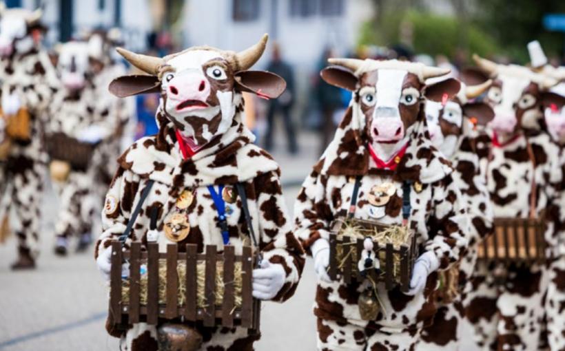 Wetter online Kühe Karneval