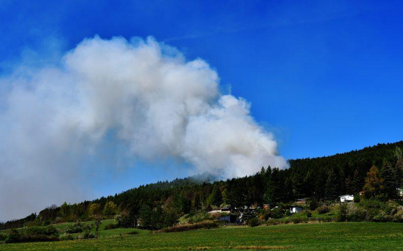 Waldbrand ThüringenForst Dr. Hans-Peter Stadermann